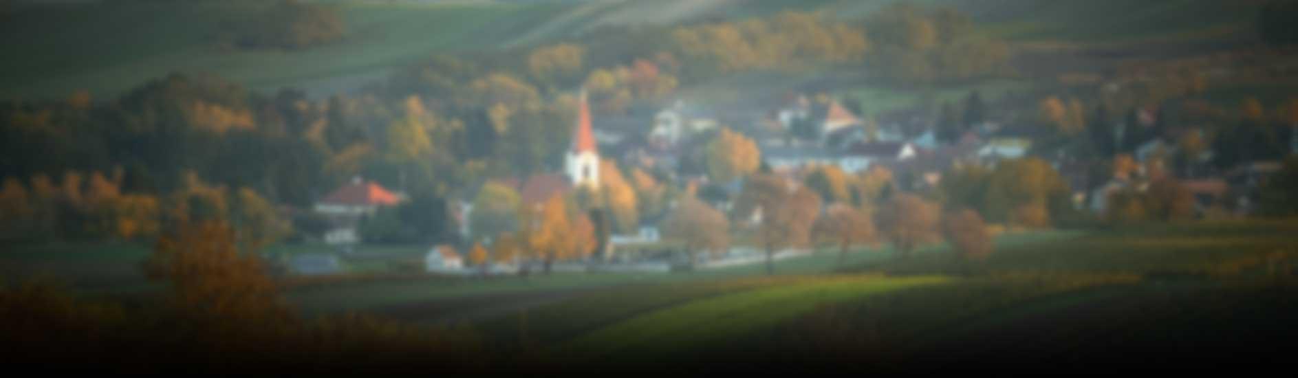 Weinrieder Banner Background